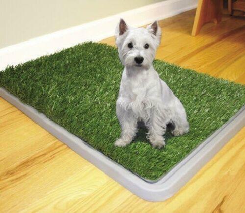 LETTIERA WC LAVABILE CANE 3 STRATI POTTY PATCH DOG TOILETTE BISOGNI ANIMALI