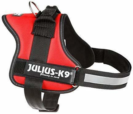Julius K9 Pettorina Per Cane Rossa Taglia 0 Media M L Imbragatura 58-76cm Collare
