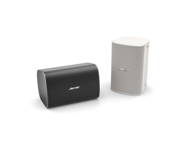 Bose DesignMax DM6SE