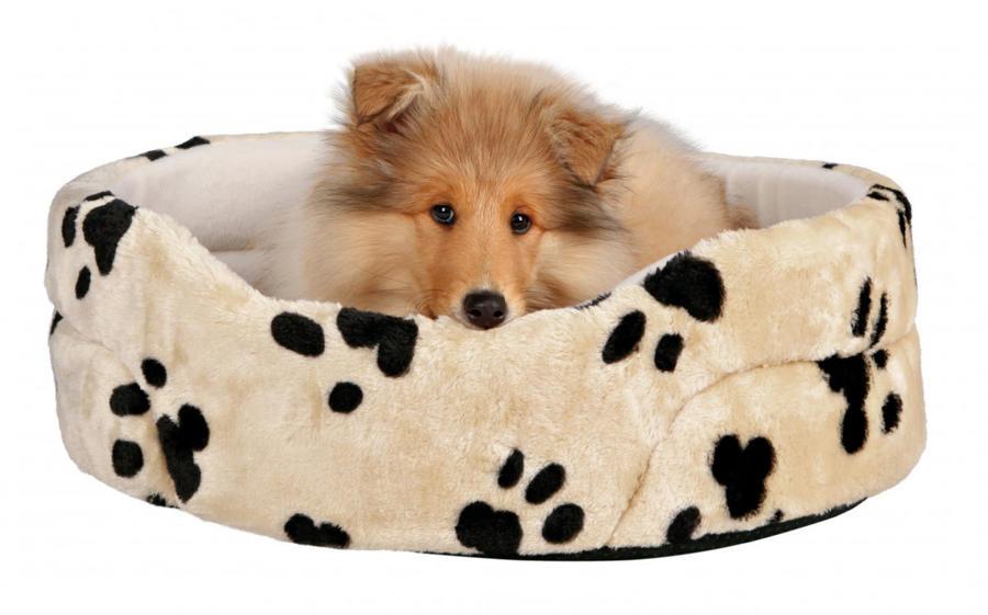 Trixie Cuccia Con Cuscino Per Cane Taglia Piccola Gatto Maine Coon 65x55cm