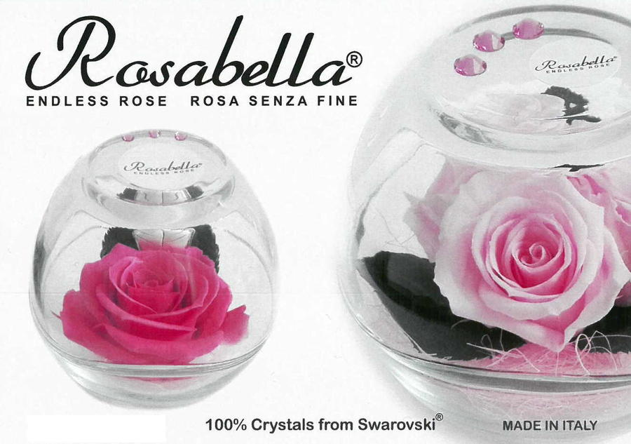 Rosabella® Vera Rosa Stabilizzata in Sfera di Vetro XL con Strass Swarovski - 3 Varianti Colore RB-EL-250