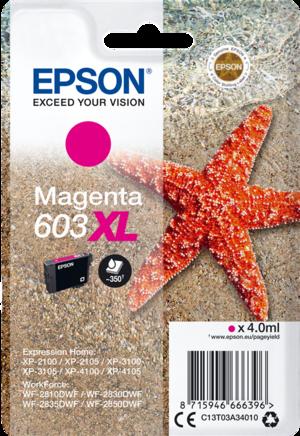 Cartuccia di inchiostro Epson Magenta serie 603XL Stella Marina