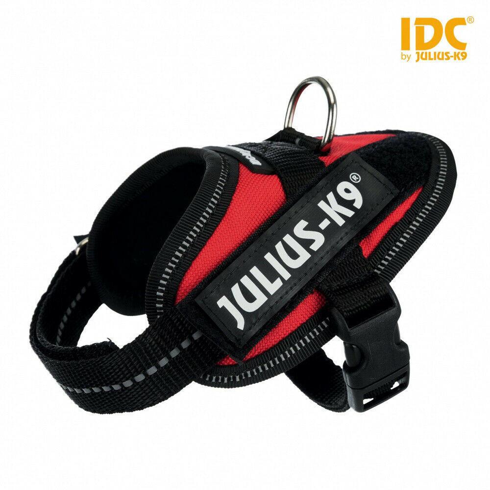 Taglia Mini-Mini Julius-K9 IDC Pettorina per cani Rosso