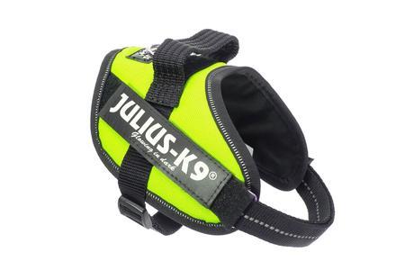 Julius K9 IDC Powerharness Pettorina Per Cani Gialla Fluo Taglia Mini Mini S 40-53 cm