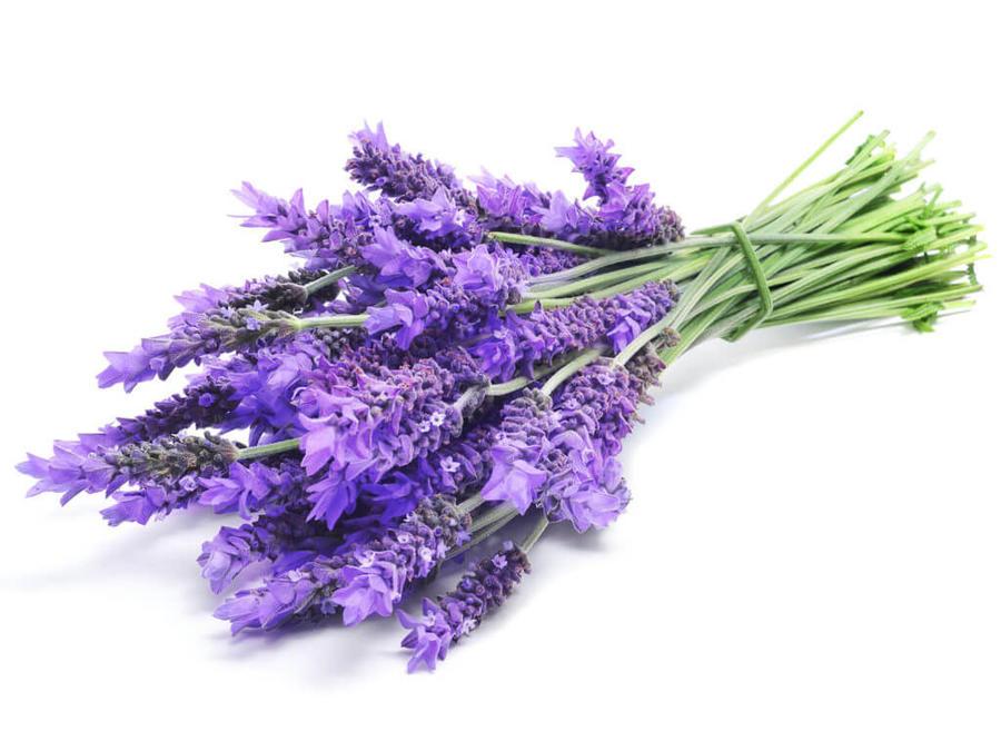 3 Diffusori Profumati per Ambiente Con Bastoncini 50ml Olio Naturale Varie Fragranze