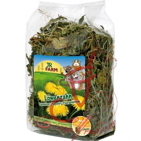 Jr Farm Dente di Leone - Gr. 100 - Gr. 500