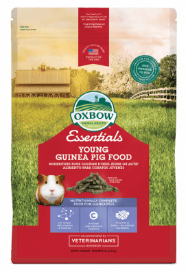 Oxbow Essential Young Guinea Pig
