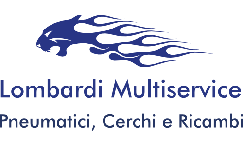 Lombardi Multiservice