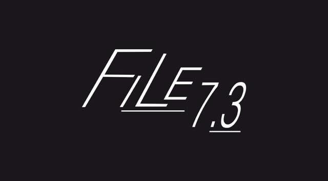 File7.3