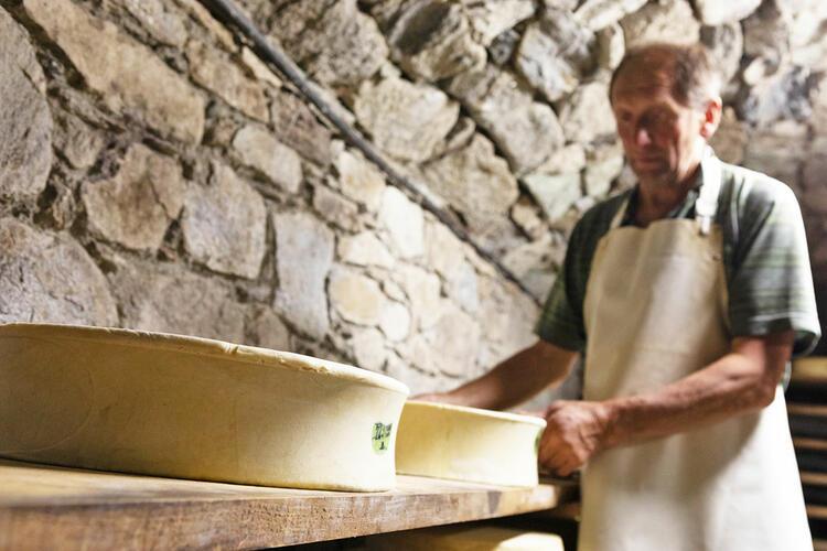CONCA DI BY