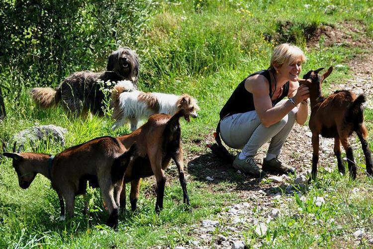 LAGHEL 7 AGRITURISMO BIO